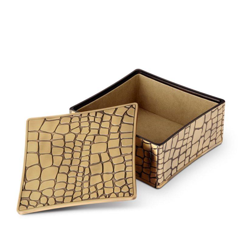 Crocodile box open