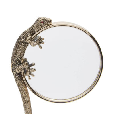 Gecko vergrootglas