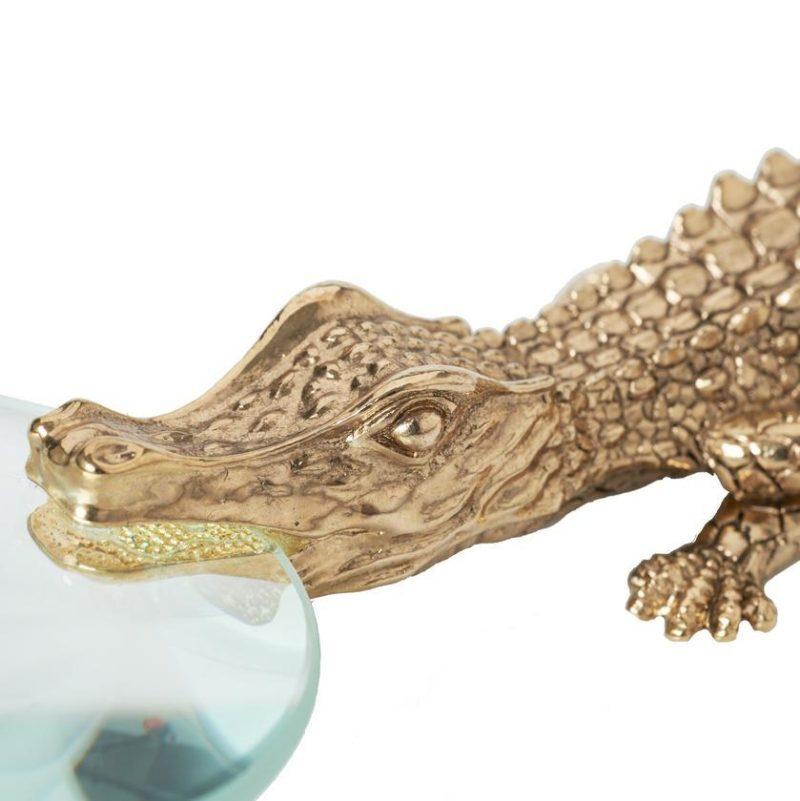 Crocodile vergrootglas